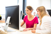 Two female students working on  computer — Stock Photo