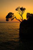 Brela roca silueta - espléndida costa de croacia — Foto de Stock