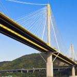Bridge in Hong Kong at day — Stock Photo #26722041