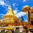 Temple in Chiang Mai, Thailand. — Stock Photo #27129937