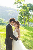 Bride and groom in the park — Stock Photo