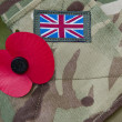 Stock Photo: Remembrance day poppy appeal