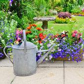 English country garden — Stock Photo