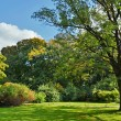 Lawn in a botanical garden — Foto Stock