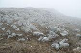 Fog in mountains — Stock Photo