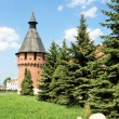 Tula Kremlin (1522), Russia — Stock Photo