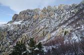 Rocks in Crimea (Ukraine) Northern Demerdzhi in January — Stock Photo