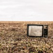 Old TV is autumn field — Stockfoto #20640459