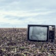 Old TV is an autumn field — Stock Photo