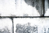 Dirty old wall from concrete blocks — Stock Photo