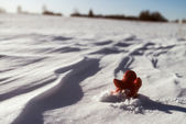 Little lonely red man stay on snow — Stock Photo