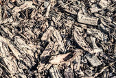 Old textural background wooden rough surface — Stock Photo