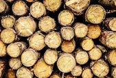 Almacén de pila como telón de fondo de madera — Foto de Stock
