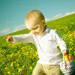 Little boy child in summer picnic with basket of fruit — Stock Photo