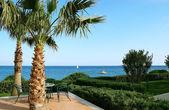 Palms and blue sea. — Stock Photo