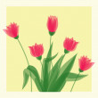 Red Tulips — Stock Vector