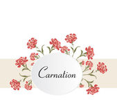 Vintage carnations background — Stock Vector