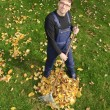 Gardening, raking leaves in the fall - Stock Photo