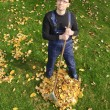 Gardening, raking leaves in the fall — Stockfoto