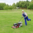 Foto Stock: Gardening, man mowing the lawn