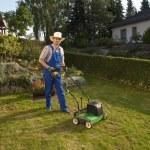 Lawn care — Stock Photo #20429687