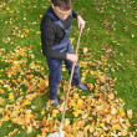 Gardening, raking leaves in the fall — Stock Photo