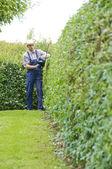 Gardening, cutting hedge — Stock Photo