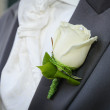 Bridegroom with flower — Stock Photo