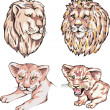 Stock Vector: Heads of lions and lion cubs