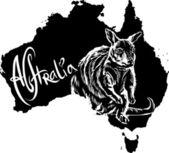 Wallaby as Australian symbol — Stock Vector