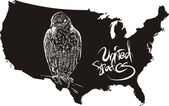 Hawk and U.S. outline map — Vettoriale Stock