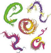 Long japanese dragon worms — Stock Vector