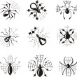 Dingbats with spiders — Stock Vector