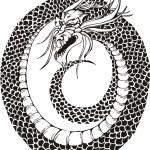 Постер, плакат: Dragon circle