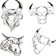 Stock Vector: Aggressive bull heads