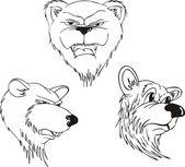 Aggressive bear heads — Stock Vector