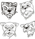 Aggressive cat heads — Stock Vector