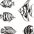 Set of black and white tropical fish — Stok Vektör