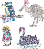 Australian birds — Stock Vector