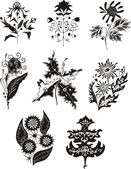 Black and white flower designs — Stock Vector