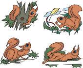 Playful comic squirrels — Stock Vector