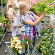 Woman shopping for flowers in garden centre - Stock Photo