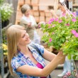 Woman at garden centre shopping for flowers - Stock Photo