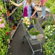 Woman at garden centre shopping for flowers — Stock Photo #12059993