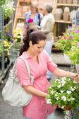Garden centre woman hold white surfinia flower — Stock Photo