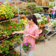 Woman buying potted flower in garden center — Stock Photo #12060012