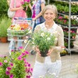 Garden centre senior lady hold potted flower — Stockfoto