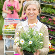 Garden centre senior lady hold potted flower - Stok fotoraf