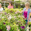 Woman shopping for flowers at garden centre — Stock Photo #12060103