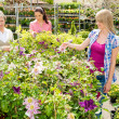 Woman shopping for flowers at garden centre — Stock Photo